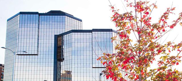 automne, immeubles